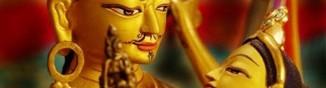 cropped-cropped-gururinpocheandmandarava.jpg